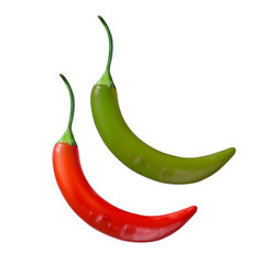 Realistic image green pepper vector
