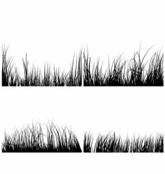 set of grasses vector image