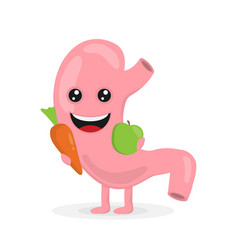 strong healthy happy stomach character flat vector image