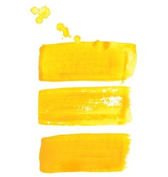 Yellow ink brush strokes vector