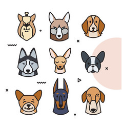 a head of different breeds vector image