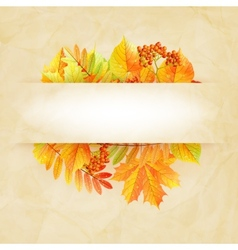Autumn abstract background with colorful leafs vector