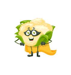 cartoon cauliflower super hero character vector image