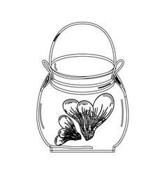 contour petals inside jar nature botanic vector image
