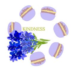 kindness design lavandula and macaroon vector image
