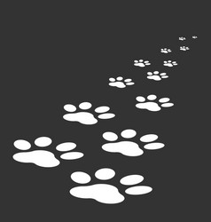 paw print icon isolated on black background dog vector image