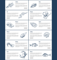 Seafood and fish sketch engraving vector
