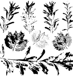 set of prints black leaves on a white background vector image