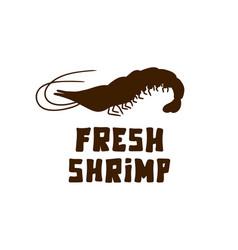 Shrimp doodle hand drawn vector