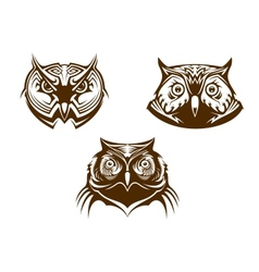 Owl heads mascots vector image vector image