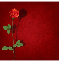 abstract grunge red background with rose and vector image
