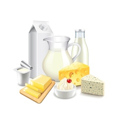 Dairy products isolated on white vector
