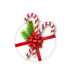 holiday gift box with red bow fir tree branches vector image