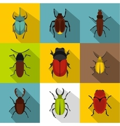 Species beetles icons set flat style vector