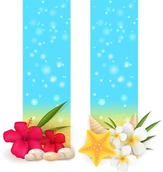 summer vertical banners vector image