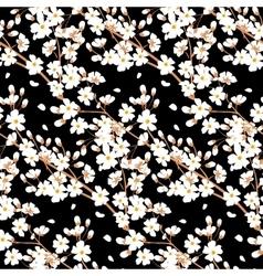 tree branch blossom vector image