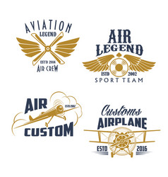 aviation retro airplane sport team icons vector image
