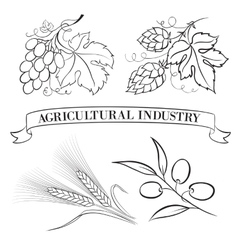 Food emblems and labels vector image vector image