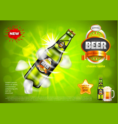 beer ads bottle with ice cubes on green vector image