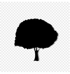 Black silhouette of foliar tree icon isolated on vector