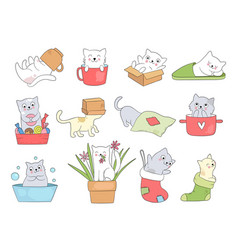 cute kitty funny cats in cups sleeping playing vector image
