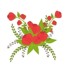 flowers and floral decoration vector image