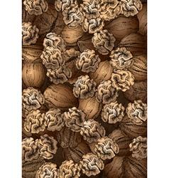 Hand Drawn Walnuts Texture vector