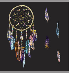Luxury ornate dreamcatcher with feathers vector