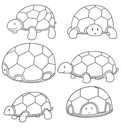 set of turtle vector image