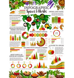 Spices infographic with herb and seasoning charts vector