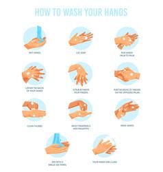 variety washing hands steps vector image