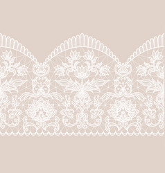 white lace ribbon vector image