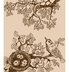 Bird and snail brown vector image vector image