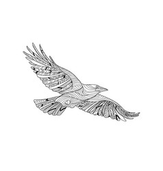 hand-drawn crow with ethnic pattern coloring page vector image vector image