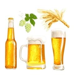 Set of beer bottle mug and glass malt hop vector image