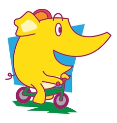 Cycle Elephant vector image