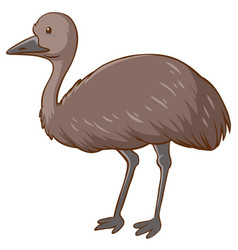 Emu cartoon character on white background vector