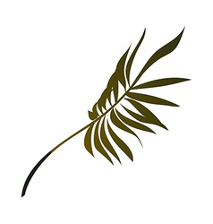 fan palm vector image