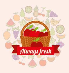 Label wicker basket with always fresh apples vector