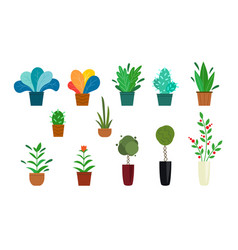 set outdoor and home potted plants bushes vector image