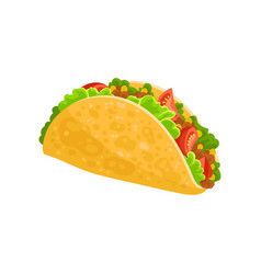 taco mexican traditional food vector image
