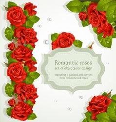 Red roses bouquet background vector image