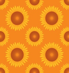 seamless sun flower pattern orange background vector image vector image