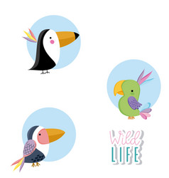 Cute wildlife animals vector