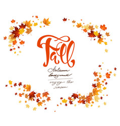 fall leaves card vector image