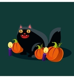 Halloween Black Cat and Pumpkins vector image