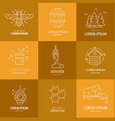 Logos with honey vector