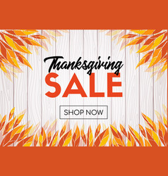 Thanksgiving sale template design shop now banner vector