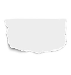 white rectangular paper tear with soft shadow vector image