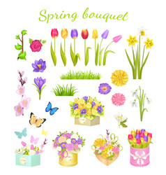 concept of beautiful spring bouquet color flowers vector image vector image